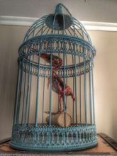 Steampunk Art Alchemy decoration piece: Decorative piece of art with taxidermy kingfisher.
