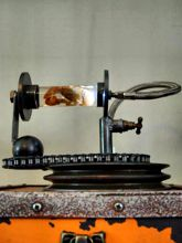 Steampunk Art Alchemy lamp for sale: Decorative piece of art with taxidermy crab.